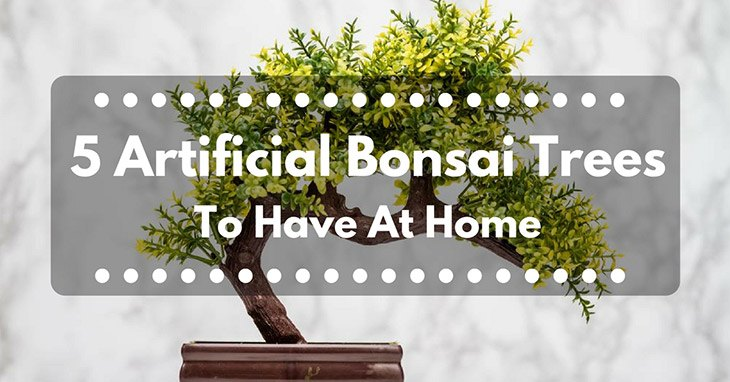 5 Artificial Bonsai Trees To Have At Home